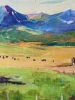 Foothills Pasture #2 - SOLD